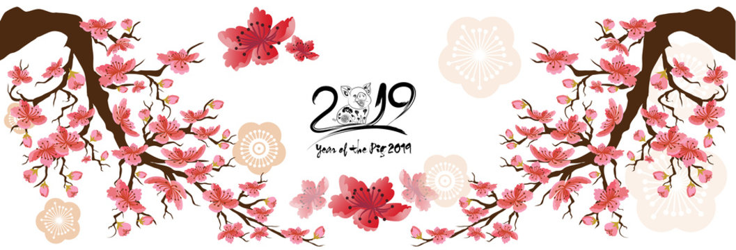 Set Banner Happy new year 2019 greeting card and chinese new year of the pig, Cherry blossom background